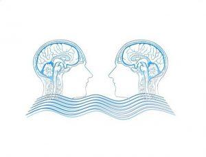 taller El Cerebro. El gran desconocido